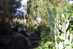 Notizie dalla Terza Municipalità: Parco Falcone