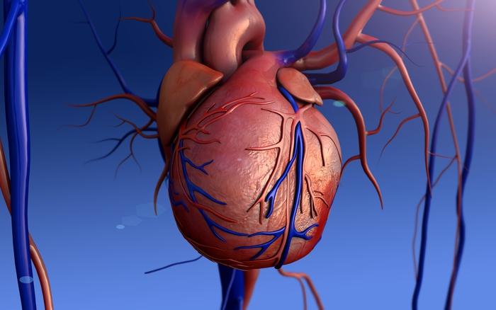 Cinquant'anni fa il primo trapianto di cuore In Sudafrica il 3 dicembre 1967,donna di 25 anni prima donatrice