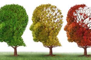Inquinamento: potrebbe raddoppiare il rischio di Alzheimer